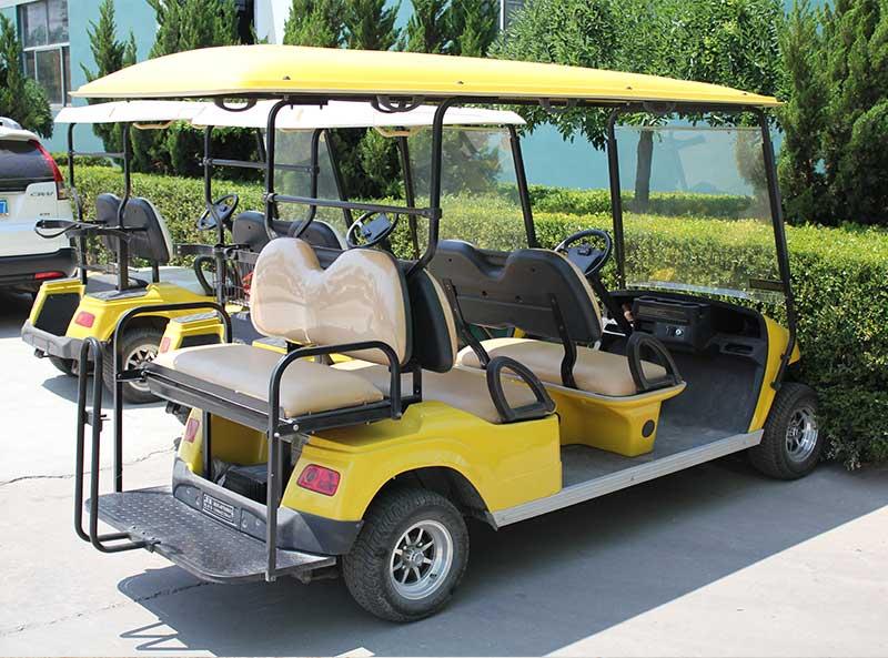 gold cart tour
